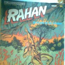 Cómics: RAHAN Nº 22. Lote 26369150