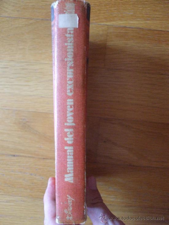 Cómics: MANUAL DEL JOVEN EXCURSIONISTA, Disney BURU LAN 1973 - Foto 7 - 38190719