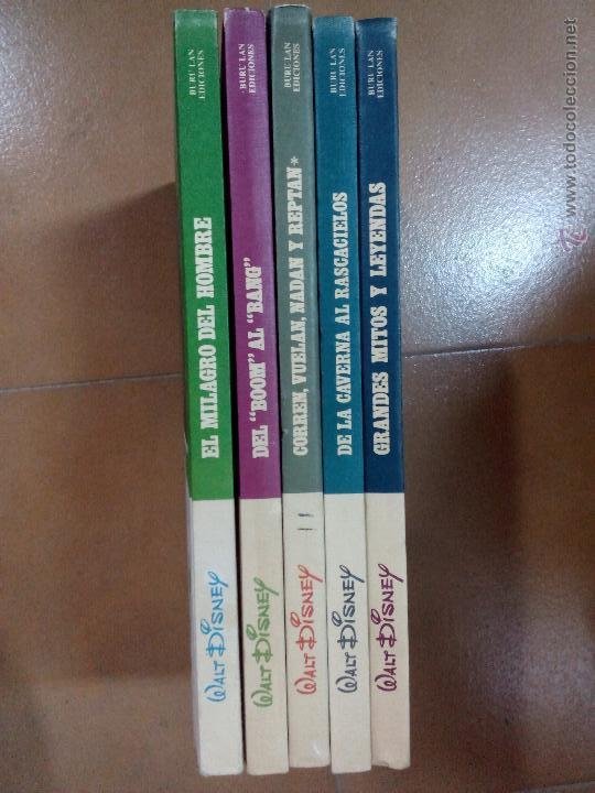 ENCICLOPEDIA DISNEY,5 VOLUMENES, TAPA DURA (Tebeos y Comics - Buru-Lan - Otros)