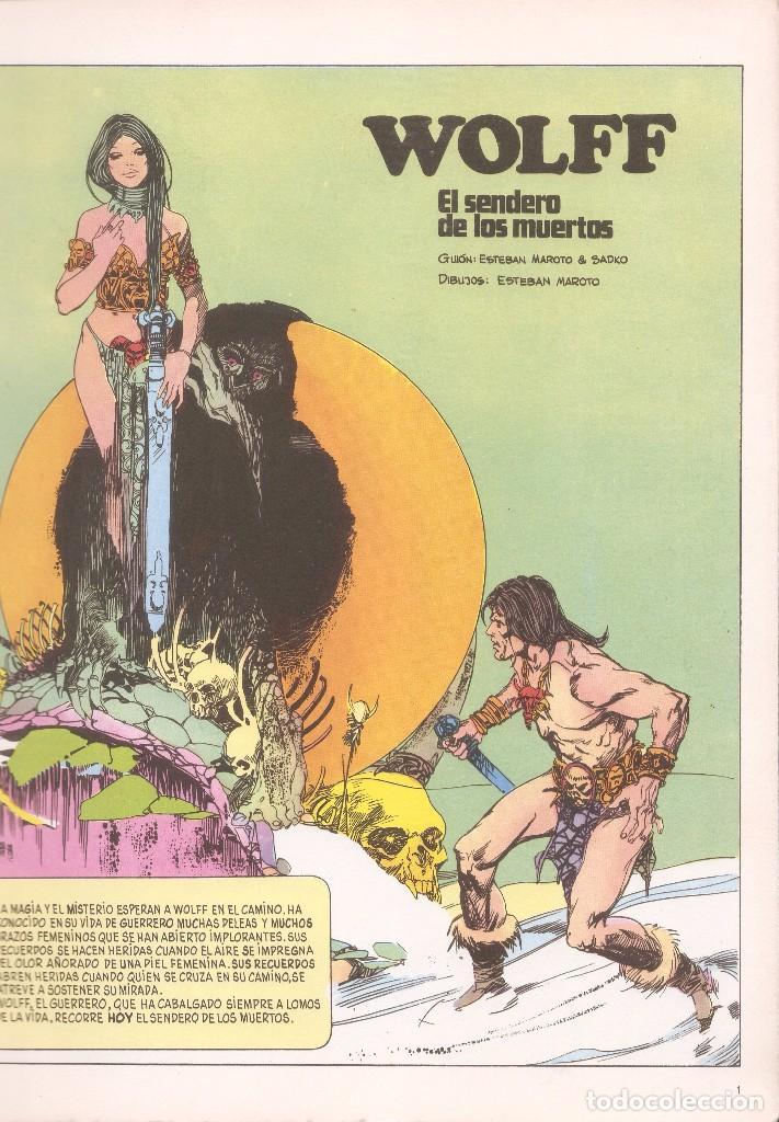 Cómics: DRÁCULA - EL SENDERO DE LOS MUERTOS /LA MUJER DE LOS LOBOS - ESTEBAN MAROTO - BURU LAN ED., 1974. - Foto 3 - 92737990