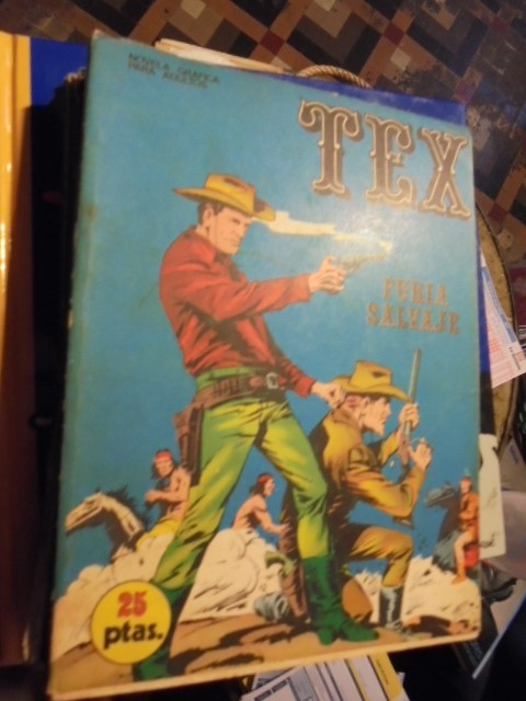 TEX - FURIA SALVAJE - Nº 14 - - ABRIR PARA LEER DESCRIPCION (Tebeos y Comics - Buru-Lan - Tex)