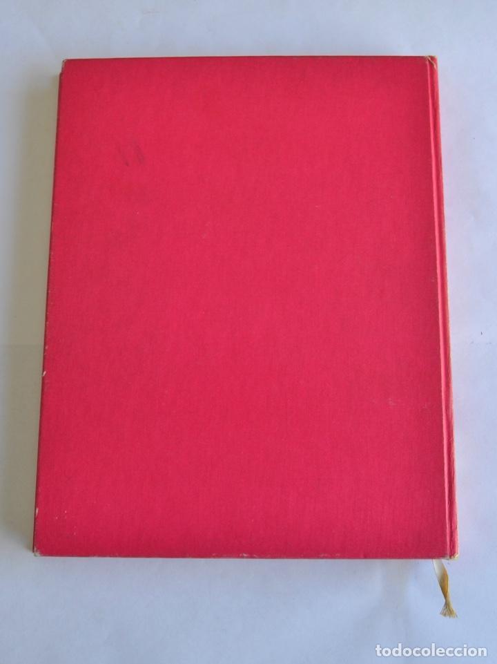 Cómics: Modesty Blaise. Tomo I. Ediciones Burulan. Ilustrador, Jim Holdaway. Guión, Peter O´ Donnell. 1974 - Foto 12 - 201229010