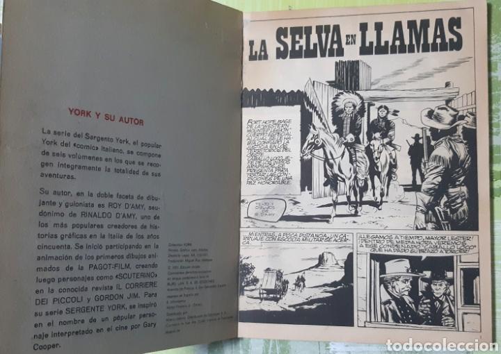 Cómics: TEBEOS COMICS CANDY - SARGENTO YORK 2 - BURULAN - MUY RARO- AA98 - Foto 2 - 203061897