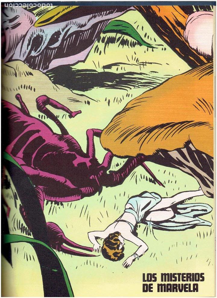 Cómics: * FLASH GORDON * TOMO VI * HEROES DEL COMIC * SURCANDO EL ESPACIO * EDICIONES BURULAN 1972 * - Foto 7 - 206116542