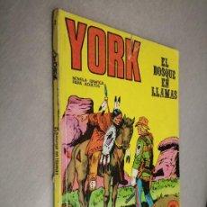 Cómics: YORK Nº 2: EL BOSQUE EN LLAMAS / BURU LAN. Lote 237169690