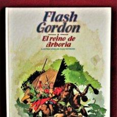 Cómics: FLASH GORDON EL REINO DE ARBORIA Nº 7 BURULAN 1983. EXCELENTE. VER FOTOS.. Lote 284367633