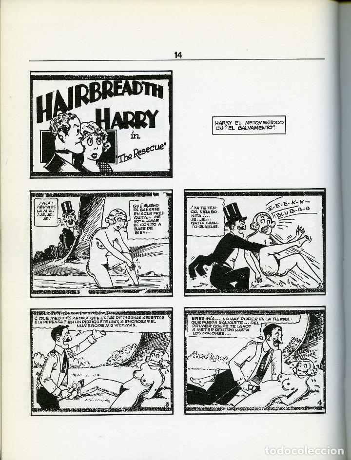 Cómics: DIRTY COMICS. COMICS PORNO SATÍRICOS DE LOS AÑOS 30. EDICIONES LA CUPULA. - Foto 2 - 121715707