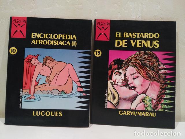 COLECCIÓN X DE LA CUPULA - 2 TOMOS (Tebeos y Comics - La Cúpula - Comic Europeo)