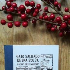 Cómics: GATO SALIENDO DE UNA BOLSA. JEFFREY BROWN. . Lote 142173138