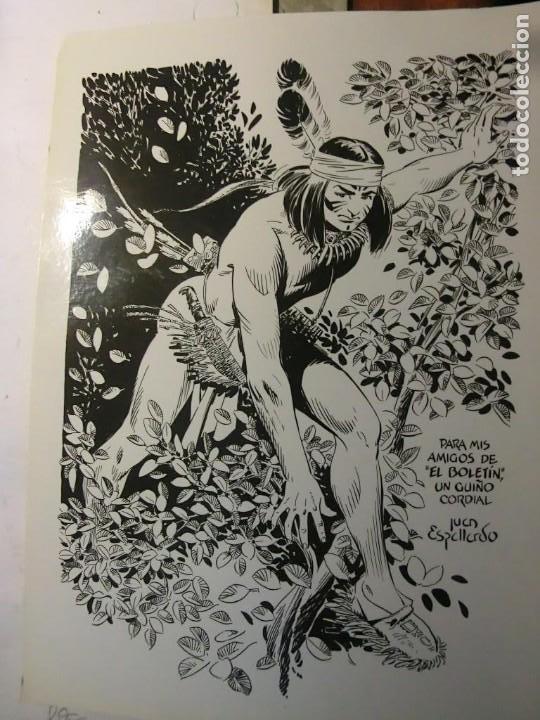 EL BOLETIN CARTULINA DE JUAN ESPALLARDO (Tebeos y Comics - La Cúpula - Autores Españoles)