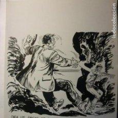 Cómics: EL BOLETIN CARTULINA DE EDMOND1989. Lote 145842606