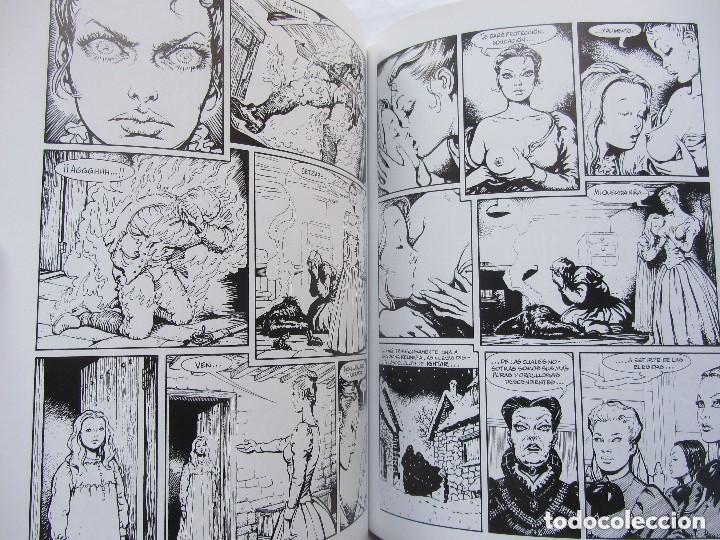 Cómics: El instituto. Solano Lopez y Barreiro. Ediciones la cupula. Vibora comix. - Foto 2 - 147581314