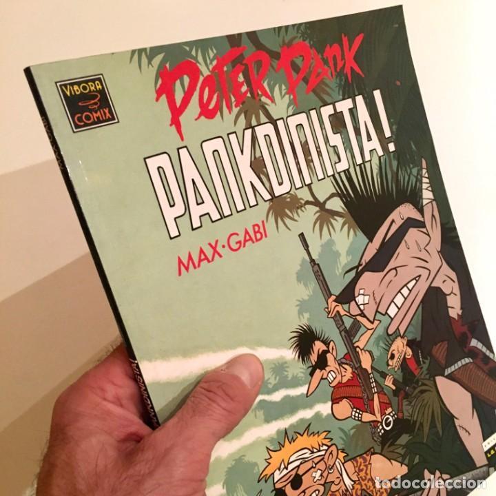 COMICBOOK PETER PANK, PANKDINISTA DE MAX Y GABI, EDITORIAL LA CÚPULA, AÑO 1990 (Tebeos y Comics - La Cúpula - Autores Españoles)