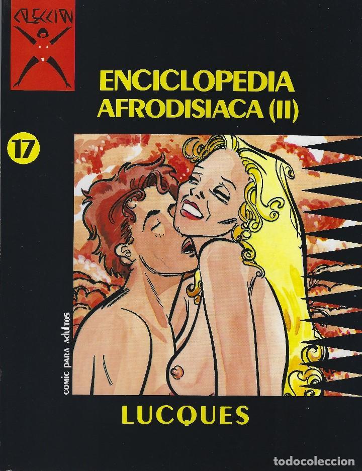 COLECCION X NUMERO 17. EDICIONES LA CUPULA. RUSTICA (Tebeos y Comics - La Cúpula - Comic Europeo)