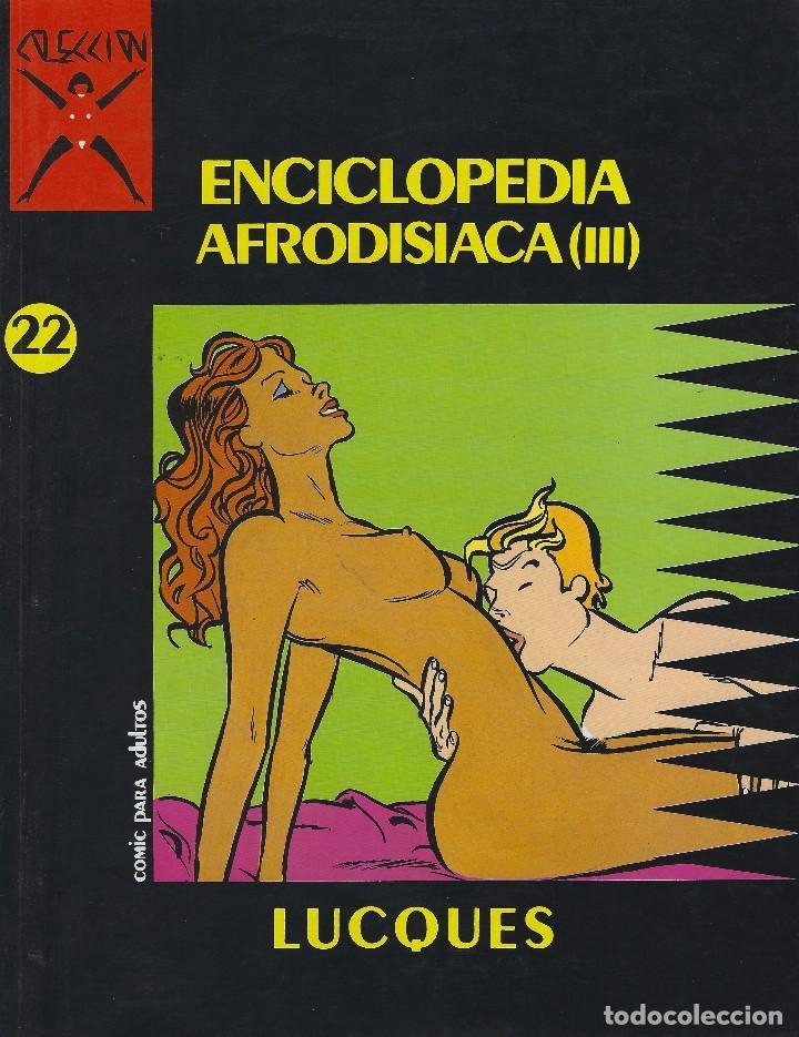 COLECCION X NUMERO 22. EDICIONES LA CUPULA. RUSTICA (Tebeos y Comics - La Cúpula - Comic Europeo)