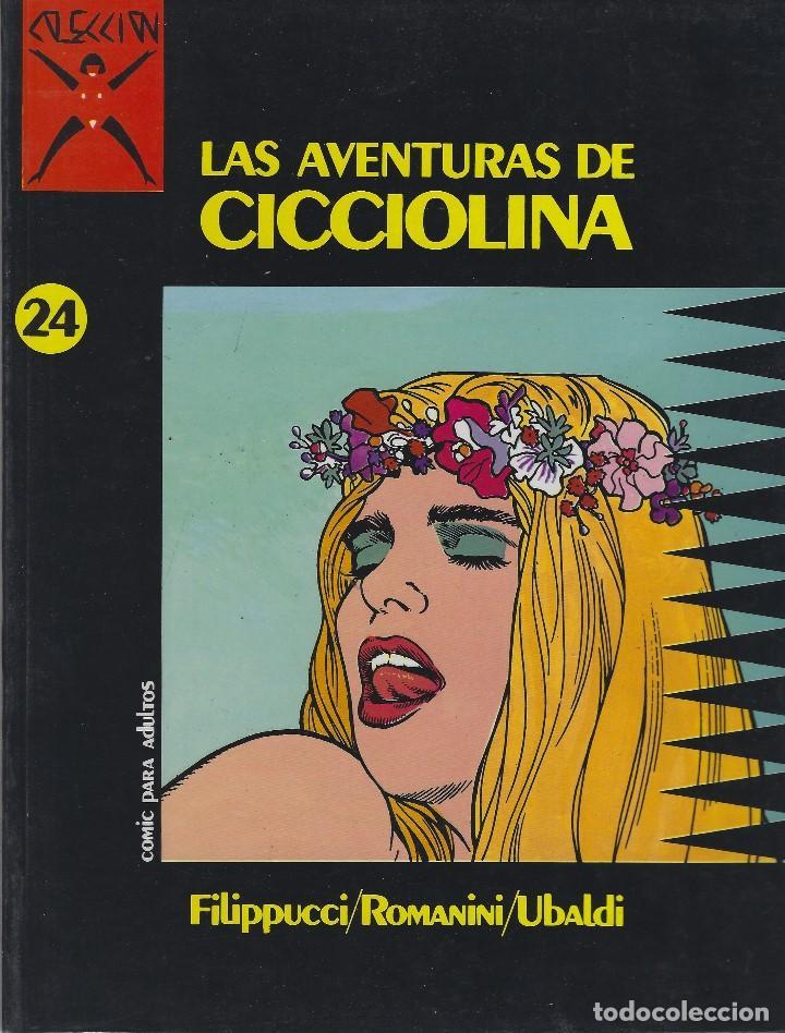 COLECCION X NUMERO 24. EDICIONES LA CUPULA. RUSTICA (Tebeos y Comics - La Cúpula - Comic Europeo)