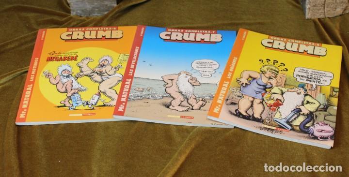 CRUMB, OBRAS COMPLETAS, TOMOS 6, 7 Y 8, M. NATURAL, 22 X 28 CM (Tebeos y Comics - La Cúpula - Comic USA)