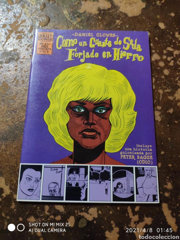 BRUT COMIX, SERIE LIMITADA 3/5: COMO UN GUANTE DE SEDA FORJADO EN HIERRO (DANIEL CLOWES) (LA CUPULA) (Tebeos y Comics - La Cúpula - Comic USA)
