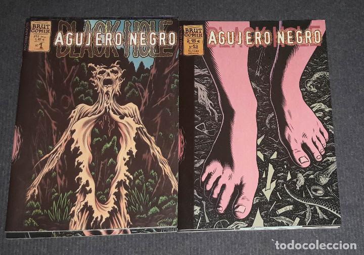 COLECCION COMPLETA 12 AGUJERO NEGRO - CHARLES BURNS - ED. LA CÚPULA (Tebeos y Comics - La Cúpula - Comic Europeo)