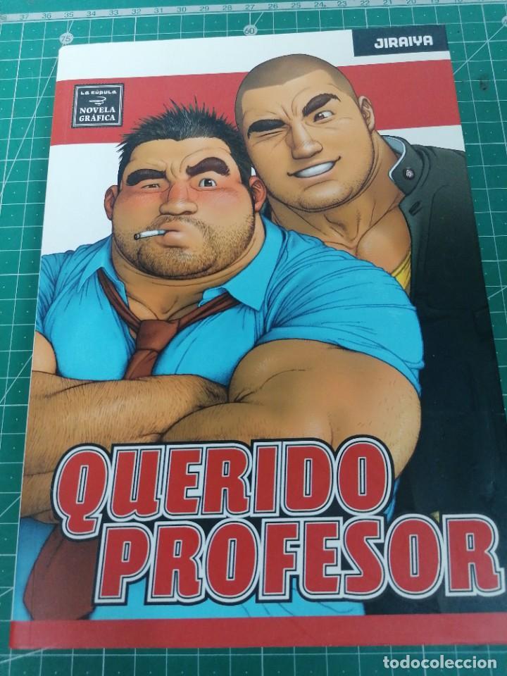 QUERIDO PROFESOR. JIRAIYA (Tebeos y Comics - La Cúpula - Autores Españoles)