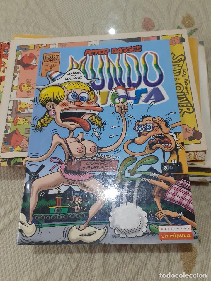 MUNDO IDIOTA - Nº 5 - PETER BAGGE - BRUT COMIX - 1999 - LA CUPULA - (Tebeos y Comics - La Cúpula - Comic Europeo)