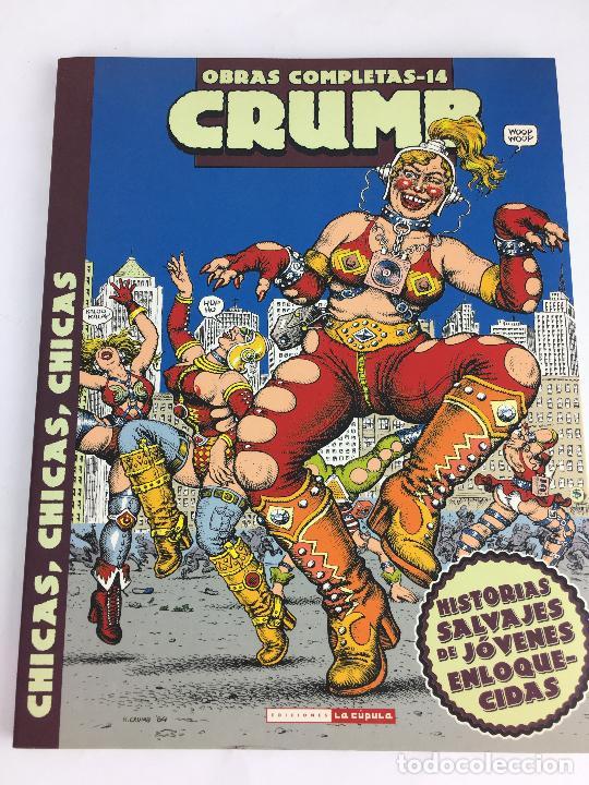 OBRAS COMPLETAS ROBERT CRUMB 14 - CHICAS, CHICAS, CHICAS - LA CUPULA (Tebeos y Comics - La Cúpula - Comic USA)