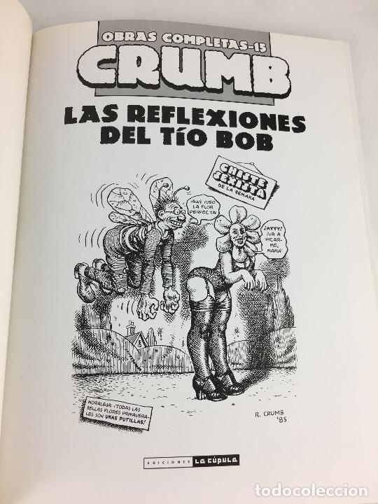 Cómics: OBRAS COMPLETAS Nº 15. CRUMB. LAS REFLEXIONES DEL TIO BOB. LA CUPULA - Foto 2 - 287723053