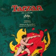 Cómics: TARZAN EN COLOR - VOLUMEN 1 (1932-1933) - EDICIONES B GRAN FORMATO - COLO2. Lote 45713897