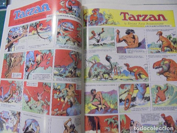 Cómics: TARZAN. HAL FOSTER. EDGAR RICE BURROUGHS. VOL. 2 (1932-1933). ED. B. PERFECTO ESTADO. 36,2X27,2CM - Foto 8 - 86330576