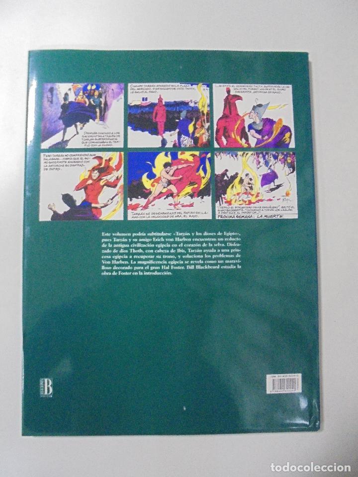 Cómics: TARZAN. HAL FOSTER. EDGAR RICE BURROUGHS. VOL. 2 (1932-1933). ED. B. PERFECTO ESTADO. 36,2X27,2CM - Foto 14 - 86330576