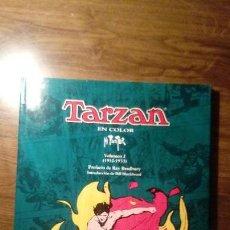 Cómics: TARZAN EN COLOR. H FOSTER. VOLUMEN 2 (1932-33). EDICIONES B. 1994. Lote 115521779