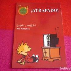 Cómics: CALVIN Y HOBBES Nº 20 ¡ATRAPADO! ( BILL WATTERSON ) ¡MUY BUEN ESTADO! FANS EDICIONES B . Lote 137794606