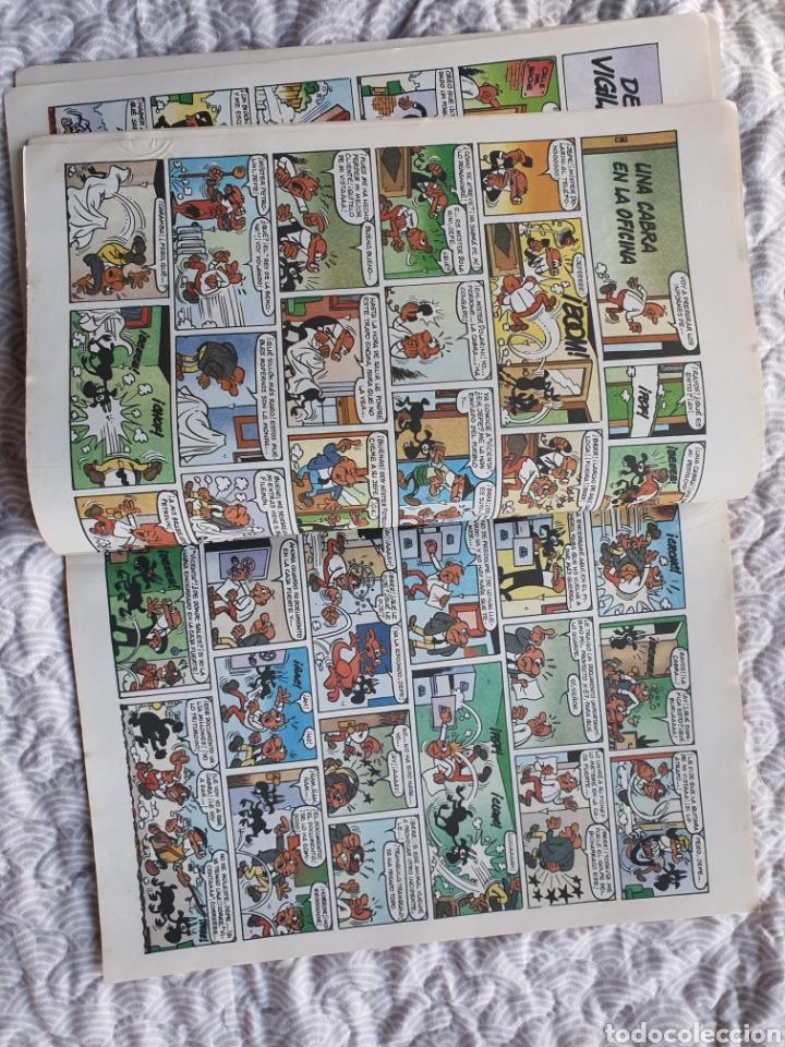 Cómics: Ole número 126 , Mortadelo y Filemón, Reyes de la risa - Foto 4 - 238200725