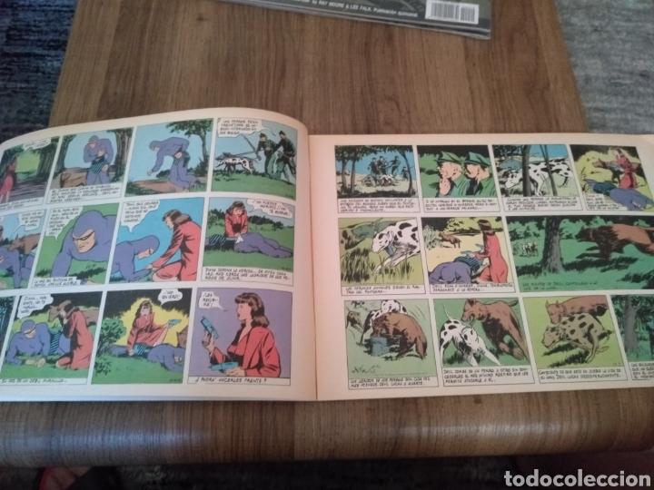 Cómics: Comic El Hombre Enmascarado N°48. Ediciones B S.A. año: 1988. Como Nuevo. - Foto 4 - 268988914