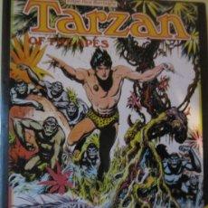 Cómics: TARZAN OF THE APES- BURNE HOGARTH- HAMLYN 1973- EDICION EN INGLES-UNA JOYA DEL COMIC MUNDIAL. Lote 34089768