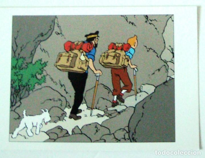 TINTIN POSTAL (Tebeos y Comics - Comics Lengua Extranjera - Comics Europeos)