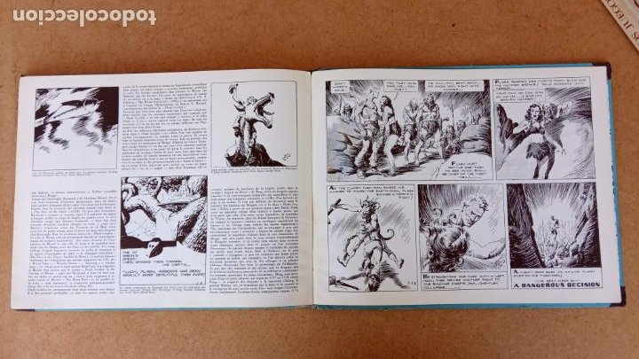Cómics: FLASH GORDON POR ALEX RAYMOND - AÑO 1973 - 158 PGS. - 35 X 28,5 CMS. BANDE DESSINÉE - Foto 20 - 202706968