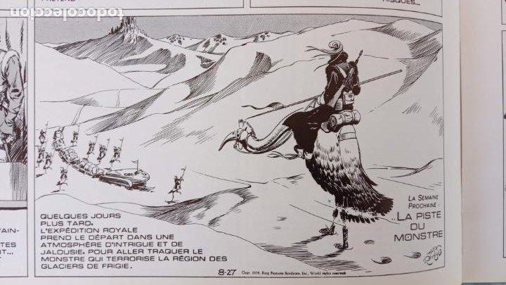 Cómics: FLASH GORDON POR ALEX RAYMOND - AÑO 1973 - 158 PGS. - 35 X 28,5 CMS. BANDE DESSINÉE - Foto 44 - 202706968