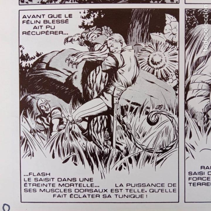 Cómics: FLASH GORDON POR ALEX RAYMOND - AÑO 1973 - 158 PGS. - 35 X 28,5 CMS. BANDE DESSINÉE - Foto 59 - 202706968