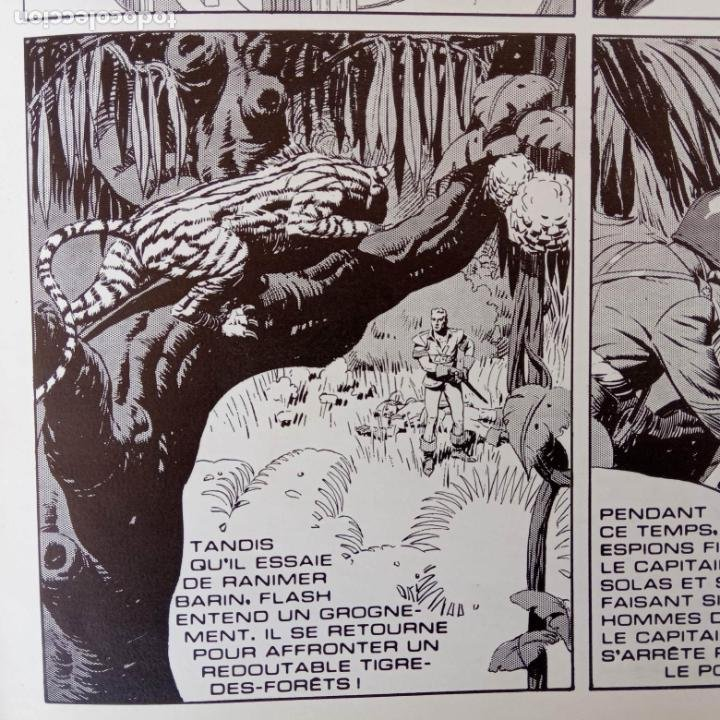 Cómics: FLASH GORDON POR ALEX RAYMOND - AÑO 1973 - 158 PGS. - 35 X 28,5 CMS. BANDE DESSINÉE - Foto 61 - 202706968