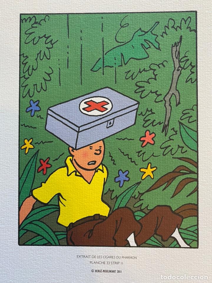 Cómics: Lote Tintin Cómic Les CIGARES Du PHARAON año 1966 + 3 planchas paginas año 2011 Hergé, Moulinsart - Foto 6 - 213789378