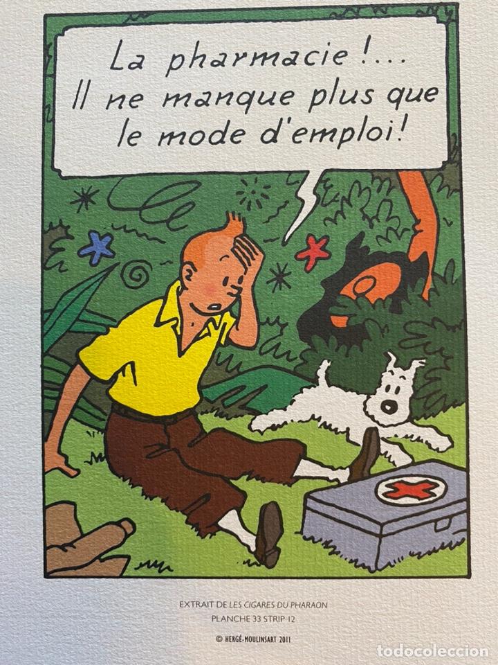 Cómics: Lote Tintin Cómic Les CIGARES Du PHARAON año 1966 + 3 planchas paginas año 2011 Hergé, Moulinsart - Foto 7 - 213789378
