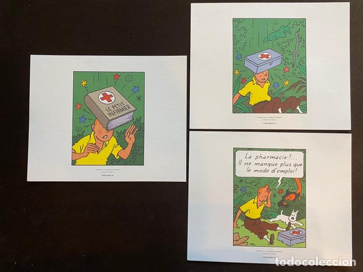 Cómics: Lote Tintin Cómic Les CIGARES Du PHARAON año 1966 + 3 planchas paginas año 2011 Hergé, Moulinsart - Foto 5 - 213789378