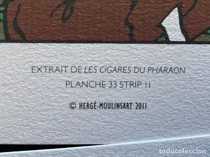 Cómics: Lote Tintin Cómic Les CIGARES Du PHARAON año 1966 + 3 planchas paginas año 2011 Hergé, Moulinsart - Foto 9 - 213789378