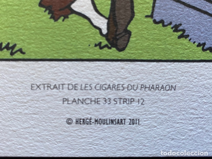Cómics: Lote Tintin Cómic Les CIGARES Du PHARAON año 1966 + 3 planchas paginas año 2011 Hergé, Moulinsart - Foto 10 - 213789378
