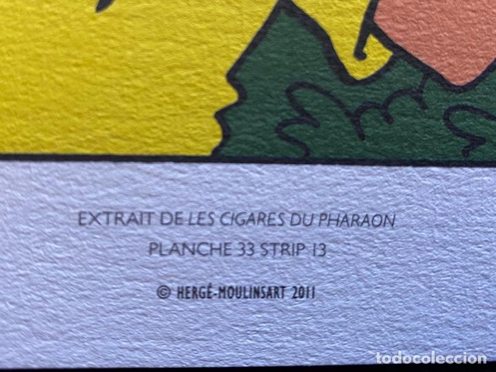 Cómics: Lote Tintin Cómic Les CIGARES Du PHARAON año 1966 + 3 planchas paginas año 2011 Hergé, Moulinsart - Foto 11 - 213789378