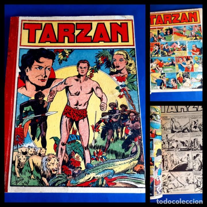 TARZAN 1948 PUBLICATIÓN HEBDOMAIRE GRAN FORMATO ENCUDERNACIÓN 15 NUMEROS (Tebeos y Comics - Comics Lengua Extranjera - Comics Europeos)