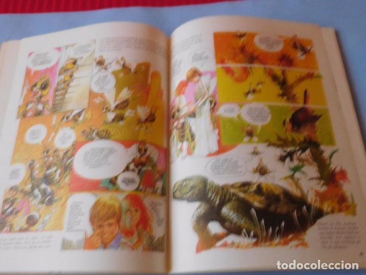 Cómics: Cuaderno del viaje al mundo de los insectos - Foto 5 - 99321727