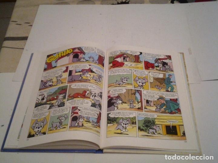 Cómics: LOTE 3 TOMOS WALT DISNEY - MICKEY - MINNIE Y DONALD - BE - GORBAUD - CJ 111 - Foto 25 - 177603478