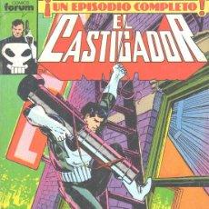 Cómics: EL CASTIGADOR. Lote 22669714